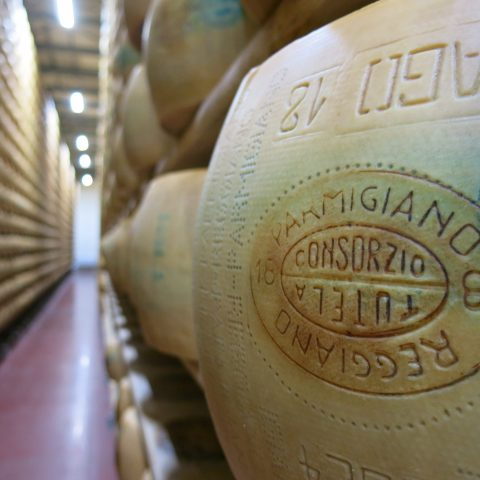 Parmesan cheese aging