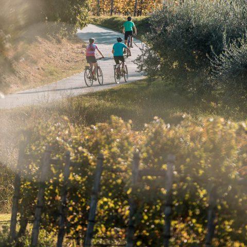 Bike tour in Lake Garda area